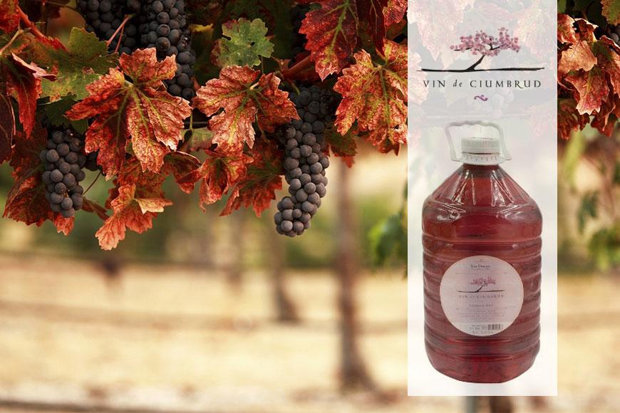Vin roze demisec Ciumbrud 5L