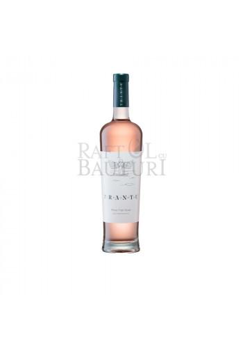 Vin roze, Crama Trantu Pinot Noir Roze
